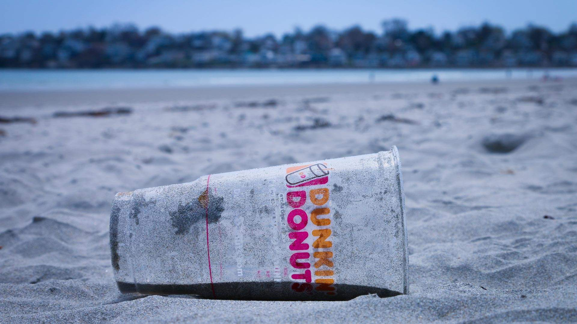 Europe Has Done the World's Oceans a Solid and Banned a Heap of Single-Use Plastics