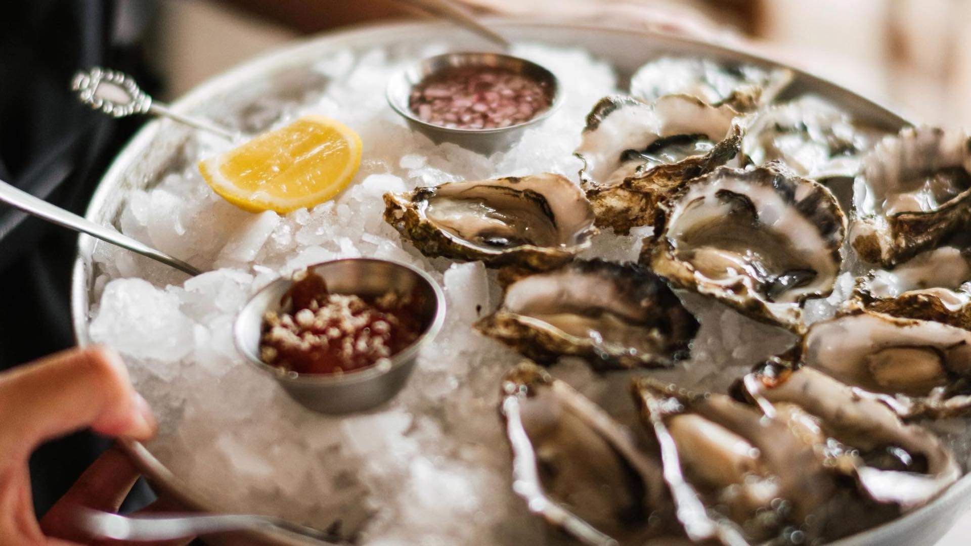 Where to Get Oysters Under $3 in Auckland Every Day of the Week