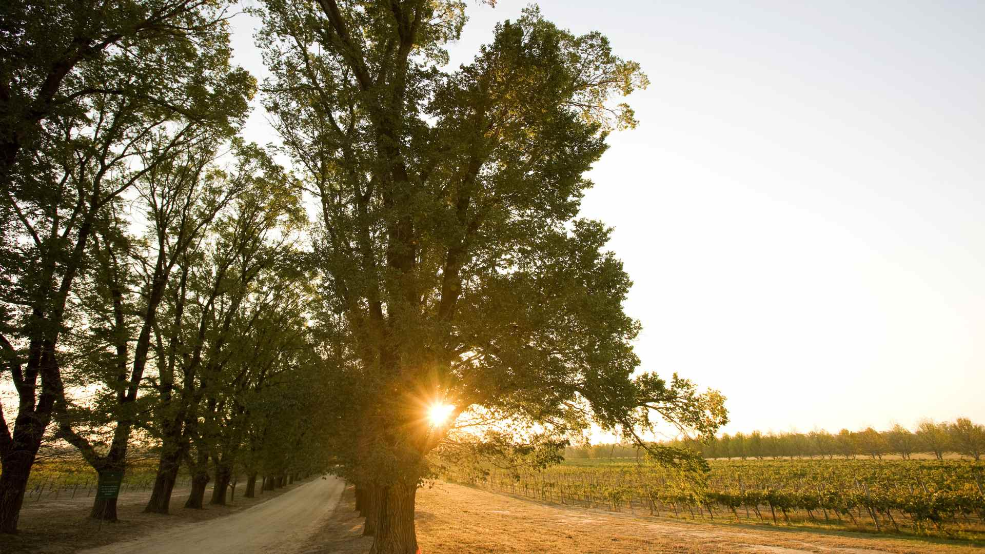 Why This Lesser-Known Victorian Wine Region Should Be Your Next Weekend Getaway