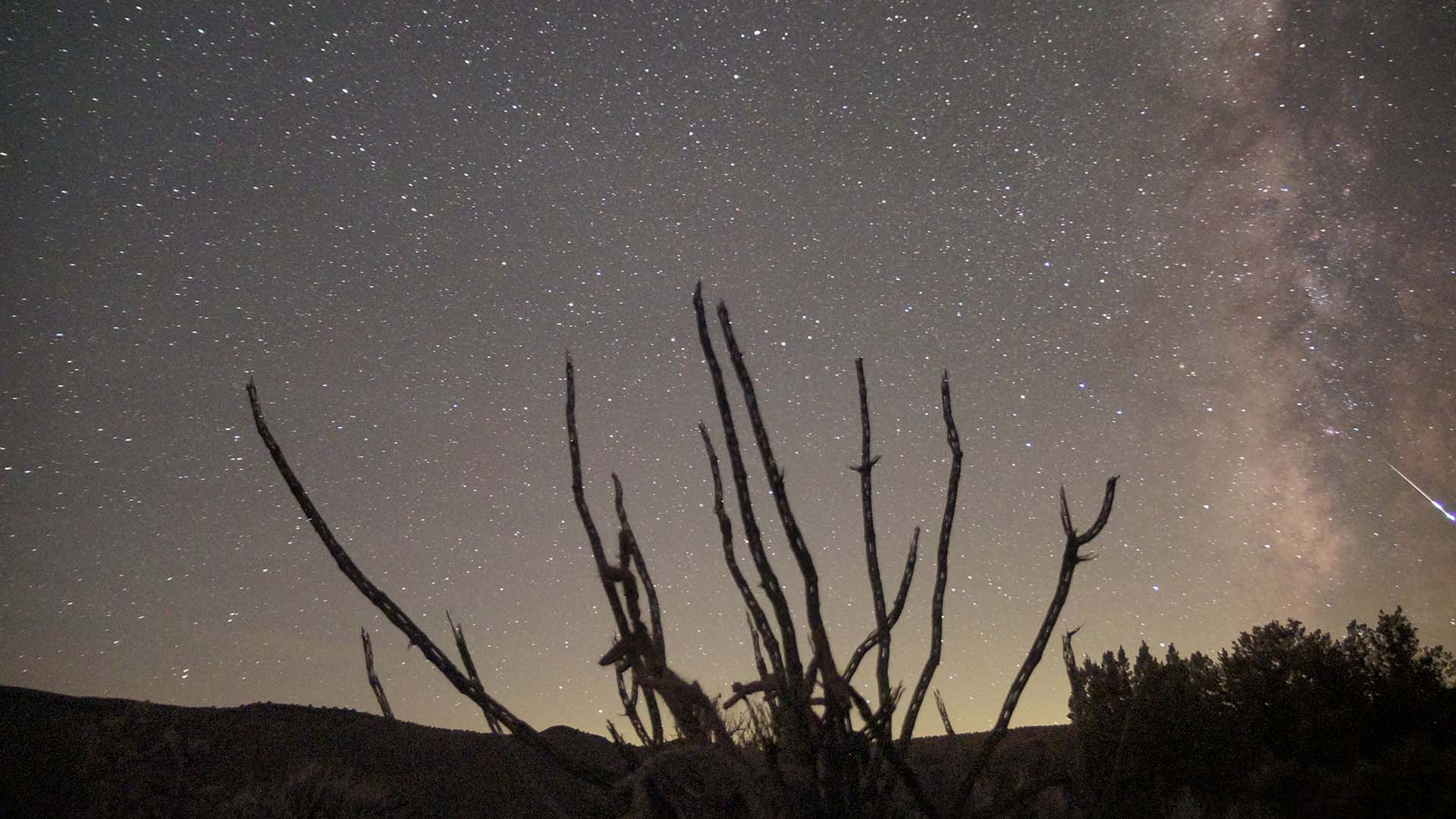 The Long-Lasting Delta Aquariids Meteor Shower Will Be Visible Down Under Next Month