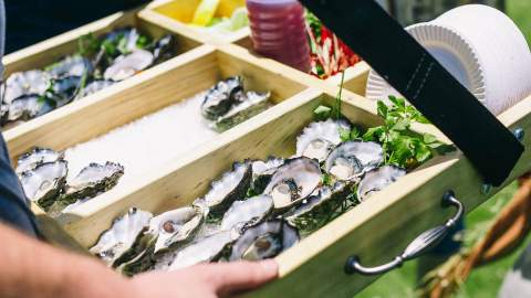 The Oyster and Seafood Festival