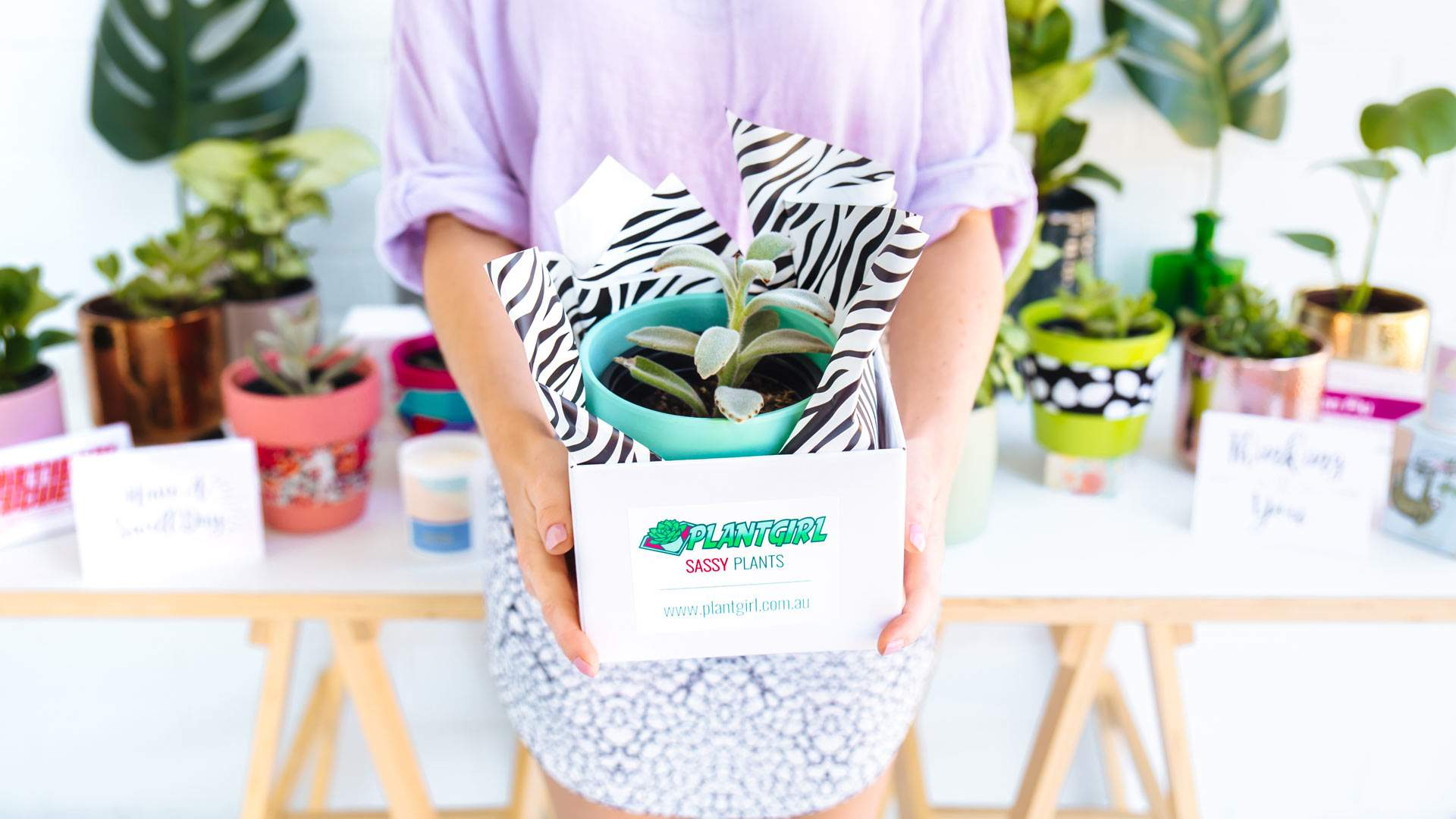 Plant Girl Is the New Same-Day Service Delivering Colourfully Potted Greenery Across Sydney