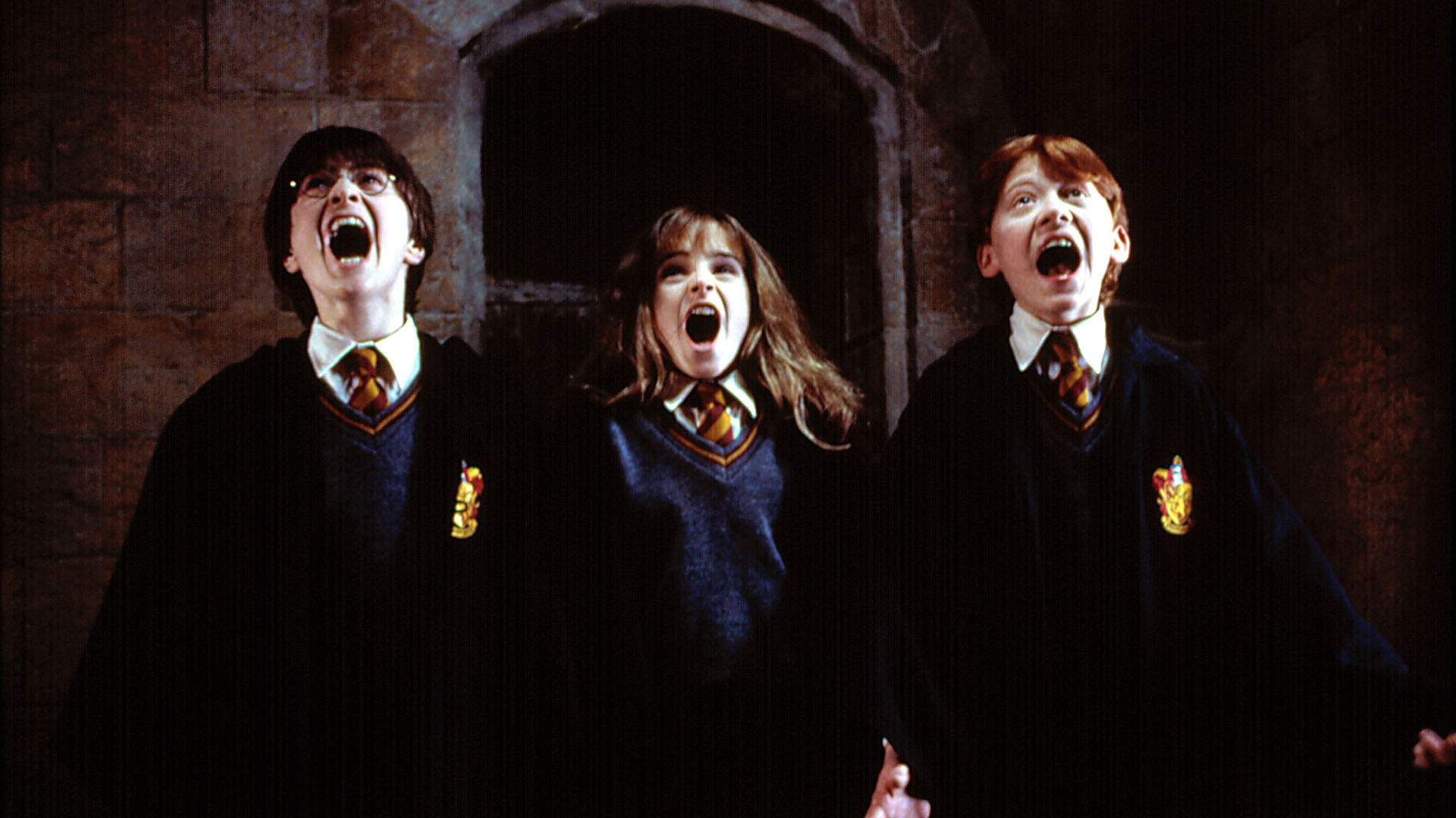 It Looks Like 'Harry Potter' Might Be Turned Into a TV Series