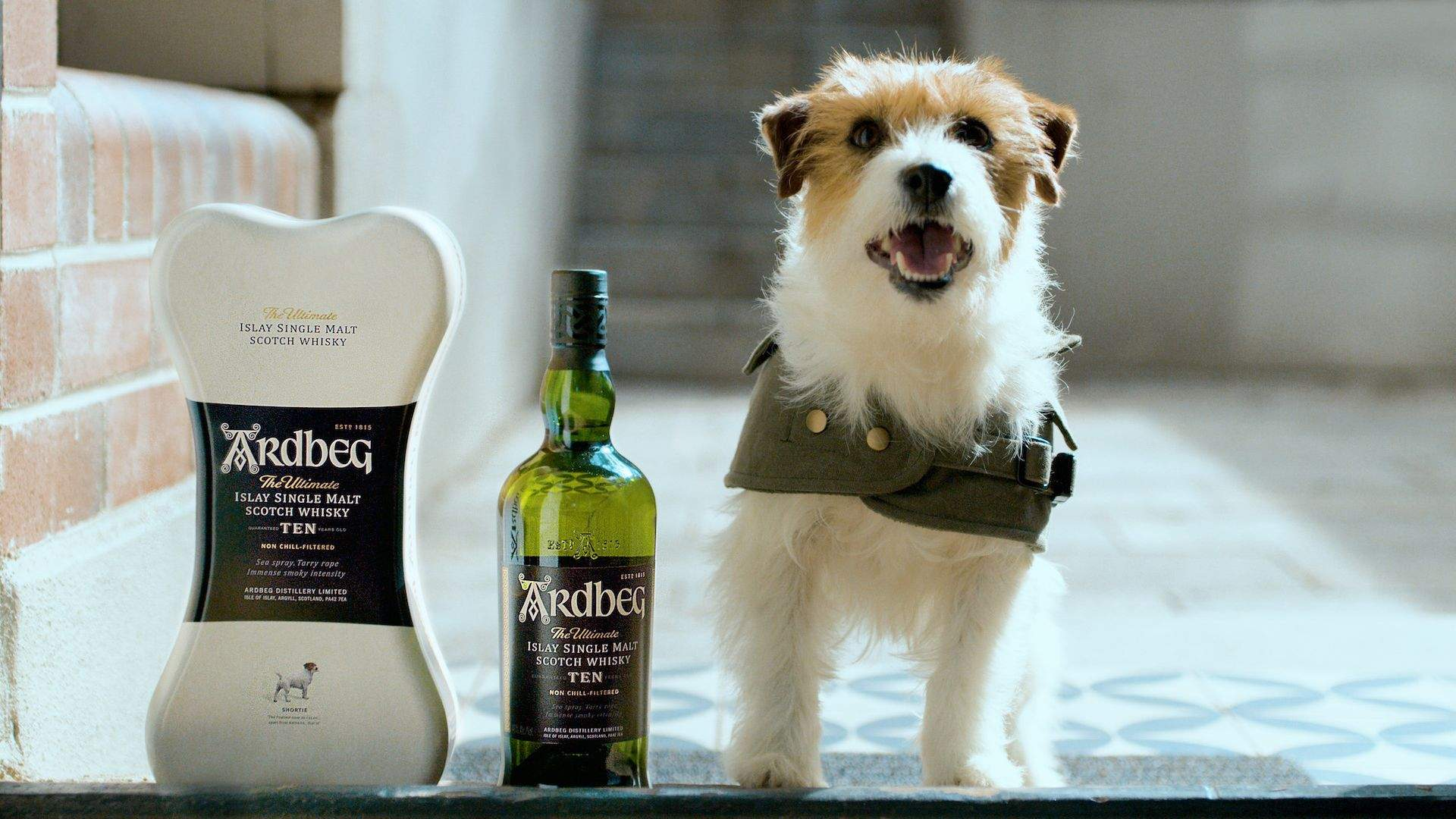 Father's Day Whisky & Dog Delivery