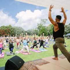 NZ Yoga Day 2019