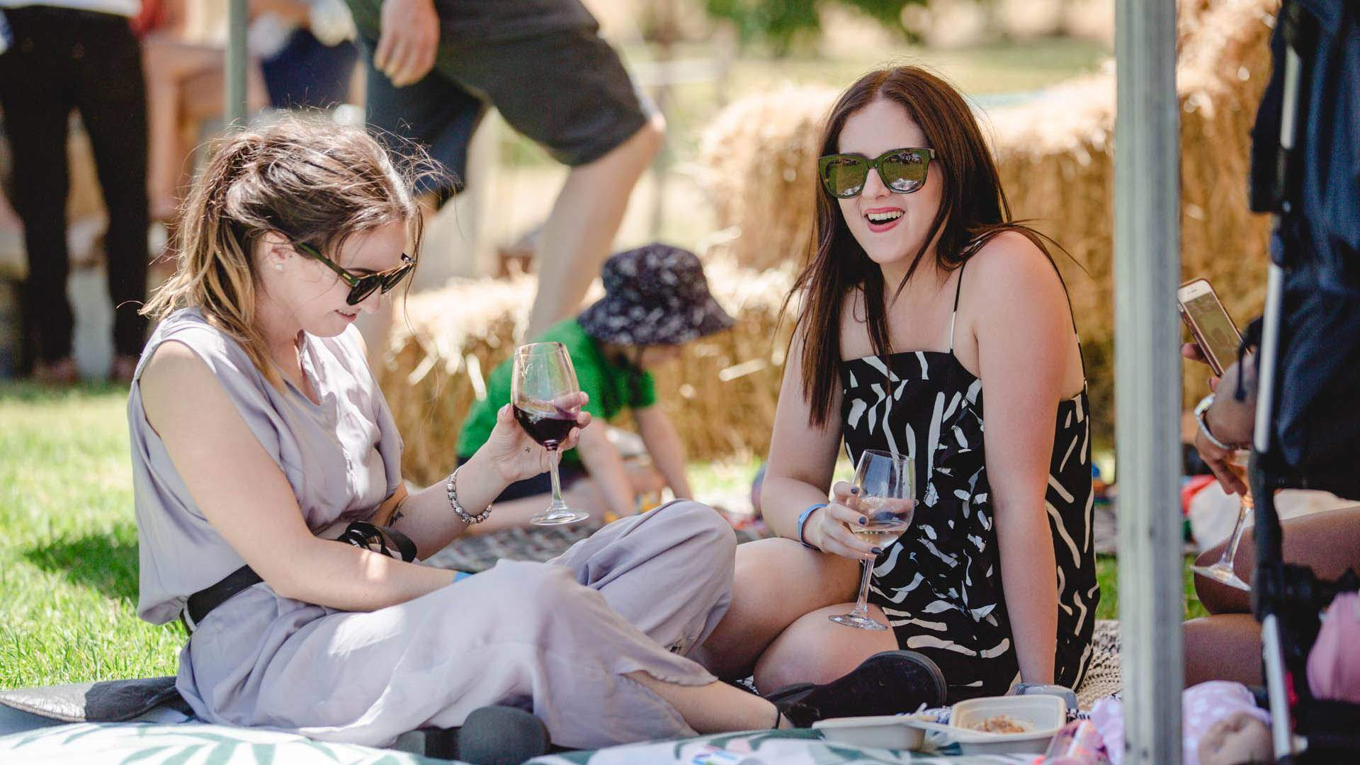 Two women drinking red wine on a picnic blanket