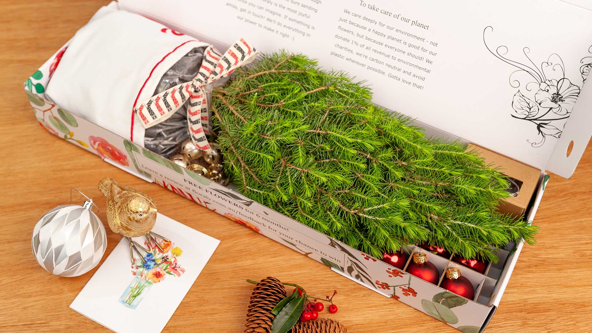 You Can Now Get Tiny Living Christmas Trees Delivered To