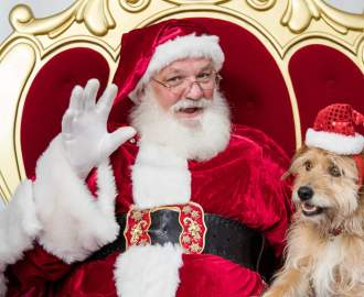 Westfields Across Australia and NZ Are Offering Adorable Photo Shoots with Santa for Your Pets