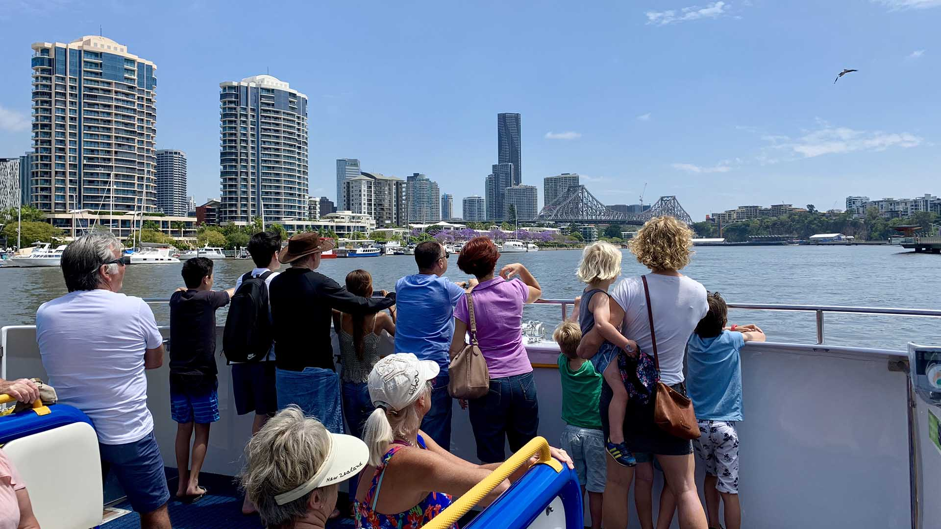 You Can Now Take Your Pet Pooch for a CityCat Ride Along the Brisbane River