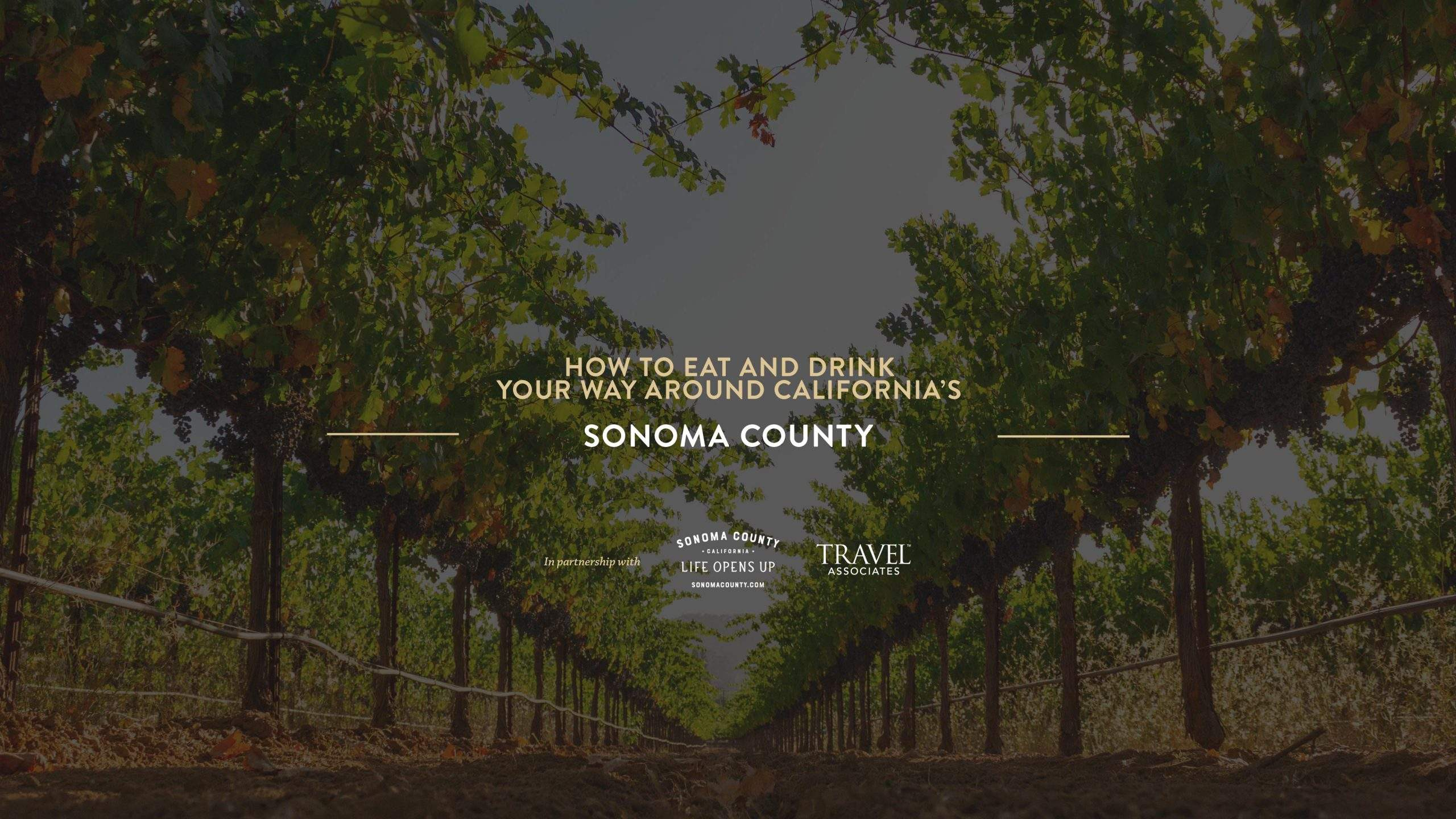 How to Eat and Drink Your Way Around California's Sonoma County