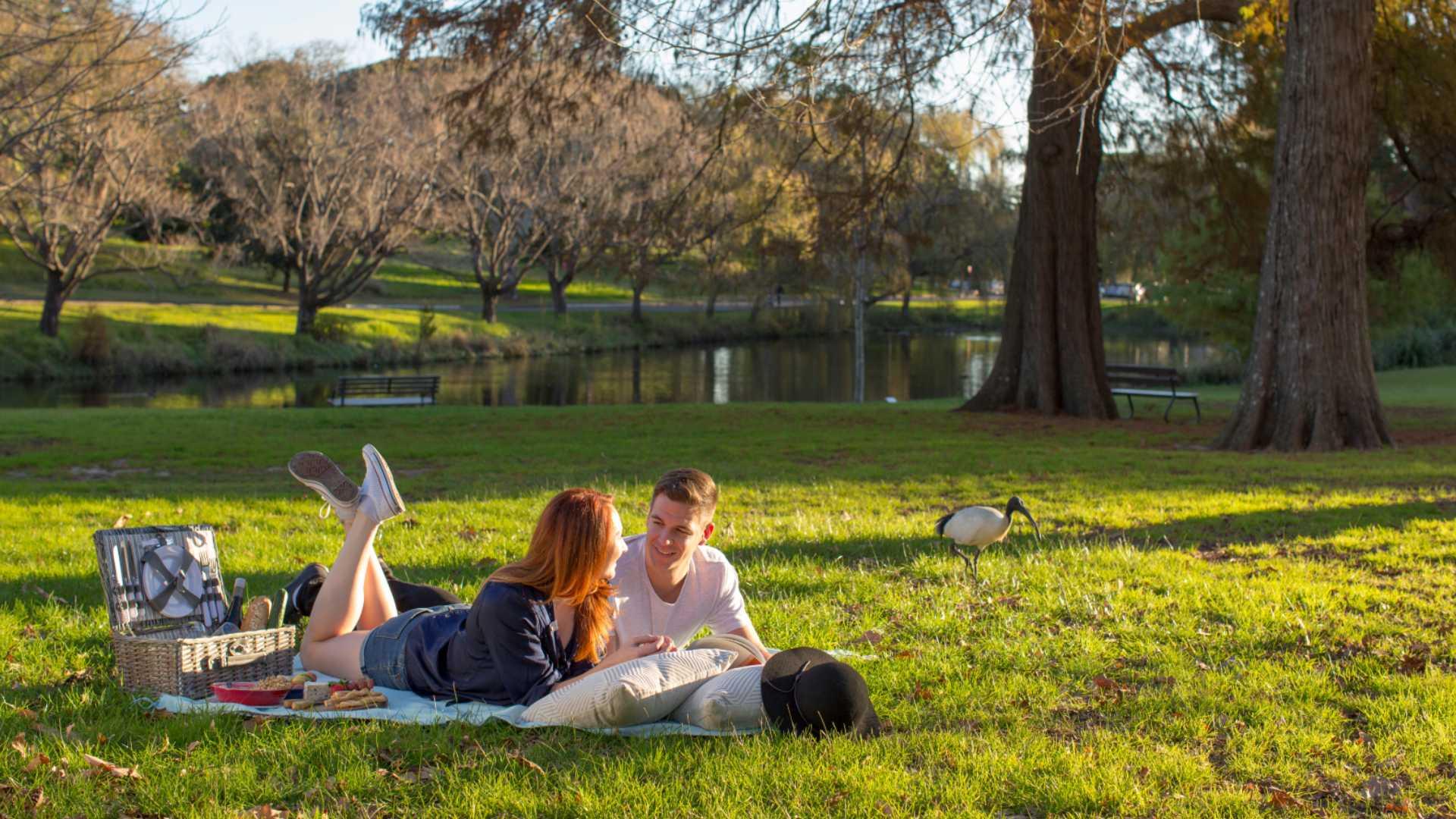 couple having a picnic in Centennial Parklands