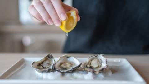 Oyster Frenzy 2021