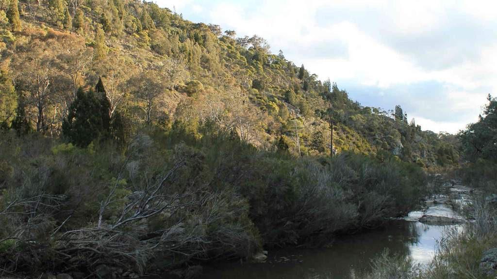 Molonglo Gorge to Blue Tiles Trail
