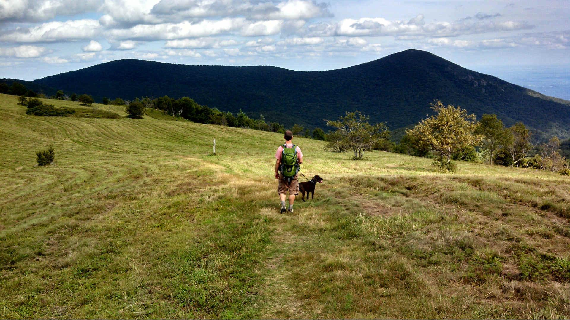 Shepherds Lookout
