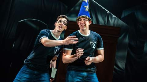 Potted Potter: The Unauthorised Harry Experience