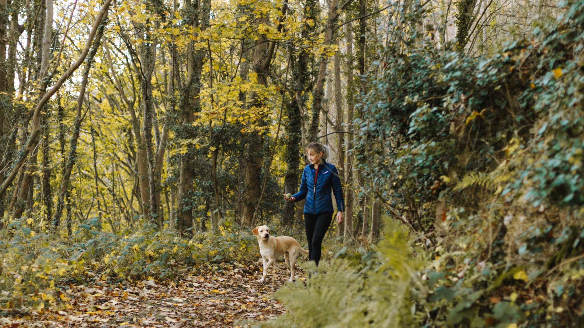Eight Epic (But Easy) Walks You Can Do with Your Dog in Canberra This Year