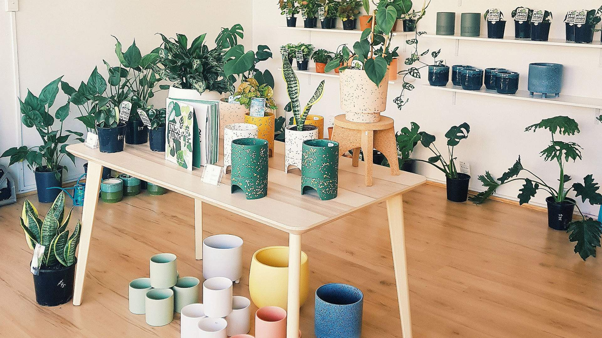 Sydney's Same-Day Plant Delivery Service Has Opened a Bricks-and-Mortar Shop in Marrickville