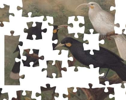 Te Papa: Online Jigsaw Puzzles