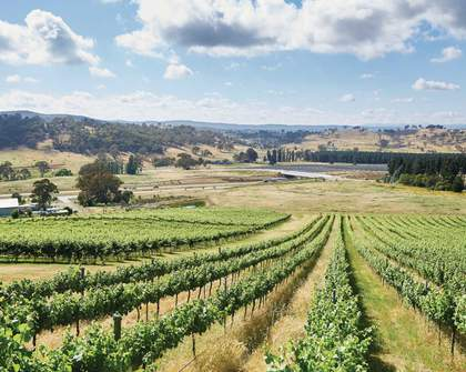 An Eco-Friendly Traveller's Guide to a Weekend in Canberra