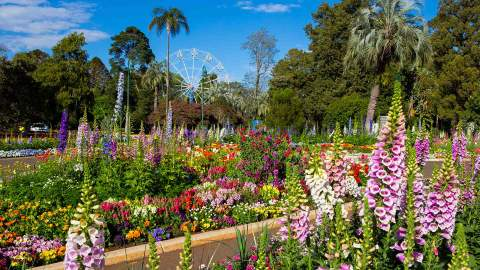 Toowoomba Carnival of Flowers 2021