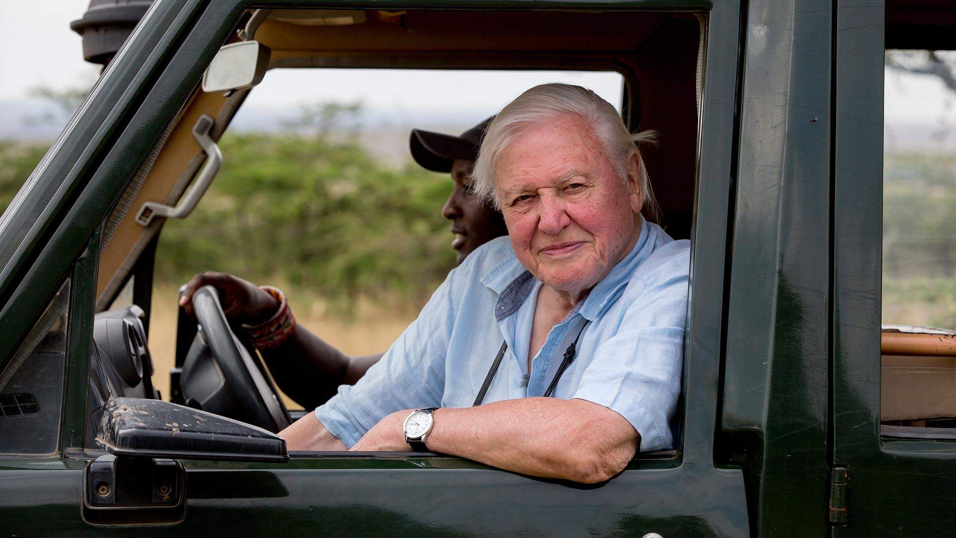 David Attenborough's Latest Nature Documentary Will Hit Cinemas Down Under Next Month