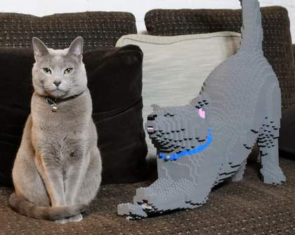 A Life-Size, Custom-Made Lego Version of Your Cat Is a Thing You Could Own