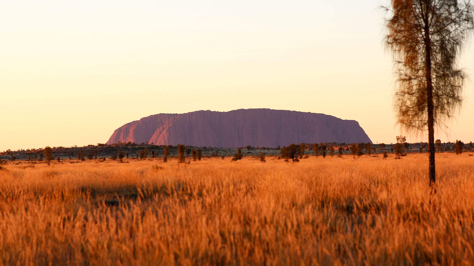 Uluru-Kata Tjuta National Park Has Been Named One of 2020's Ultimate Travel Experiences
