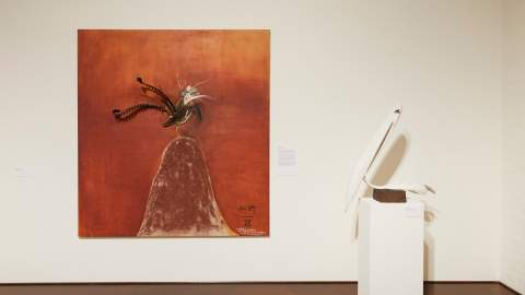 Brett Whiteley: Feathers and Flight
