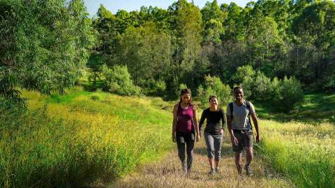 Six Bushwalks in Western Sydney Parklands that You Should Explore This Summer