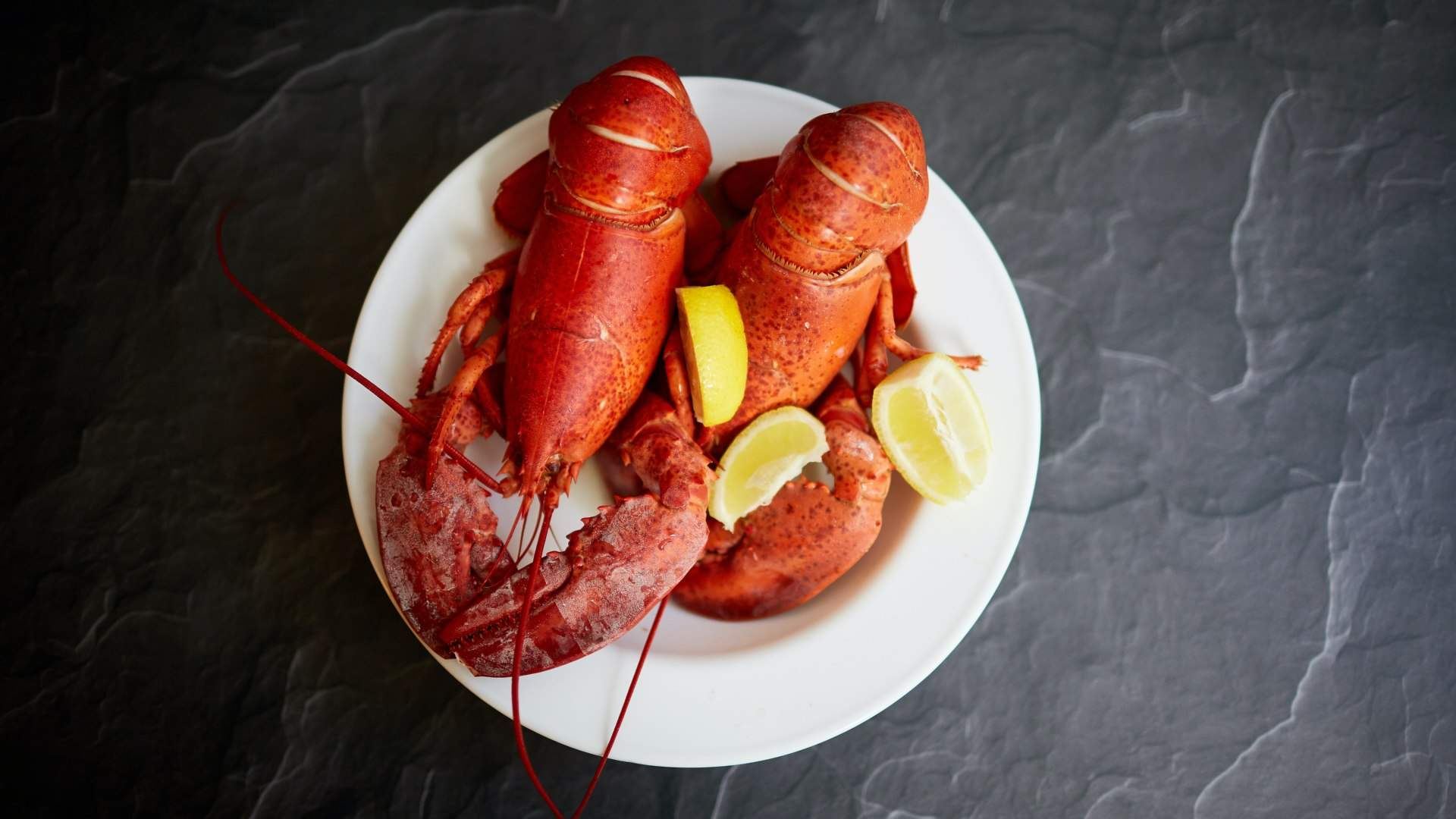 Woolworths and Coles Are Selling $20 Lobsters Nationwide in the Lead Up to Christmas