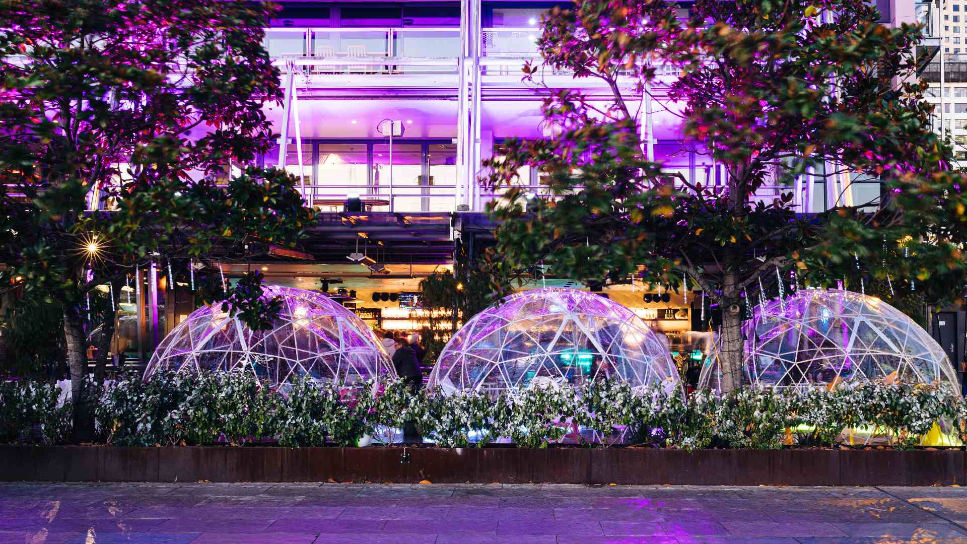 You Can Now Book Private Igloos with Bottomless Food and Drinks at Two Sydney Venues