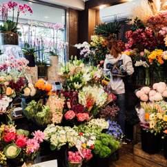 Bless Flowers