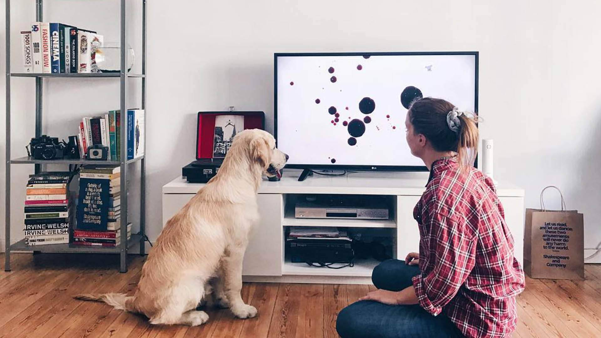 Dog TV Is the New Streaming Platform That'll Keep Your Pooch Entertained While You're Out