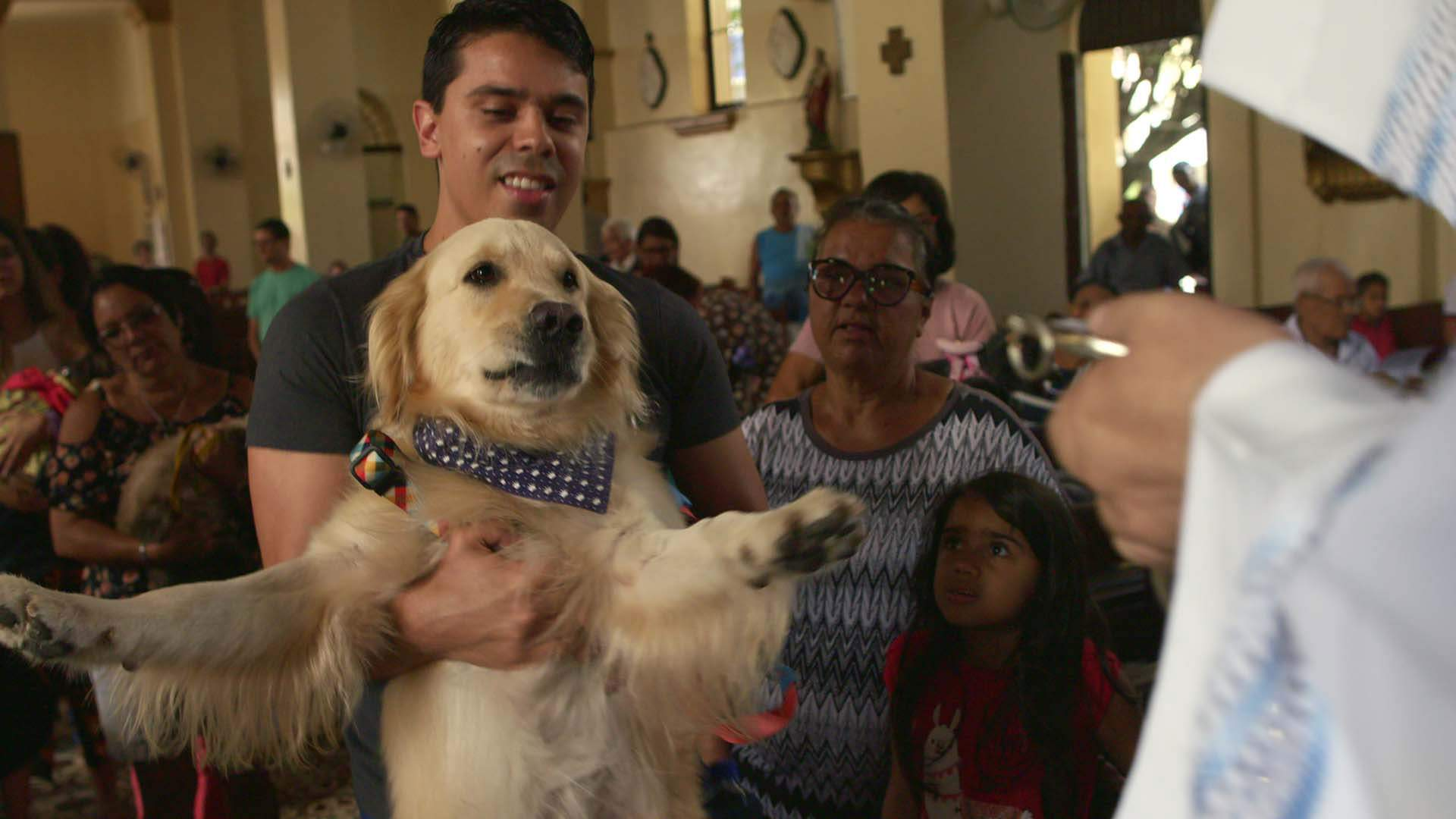 Netflix's Adorable 'Dogs' Docuseries Is Returning for a Second Season This July