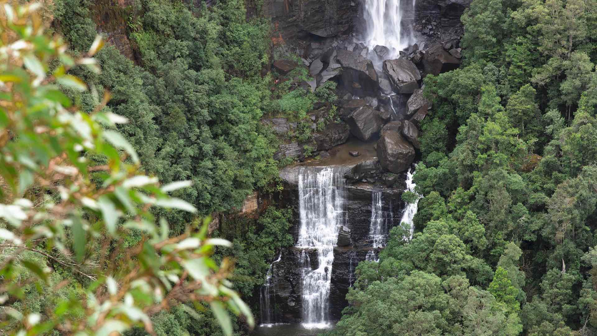 How to Spend 48 Hours in Kangaroo Valley