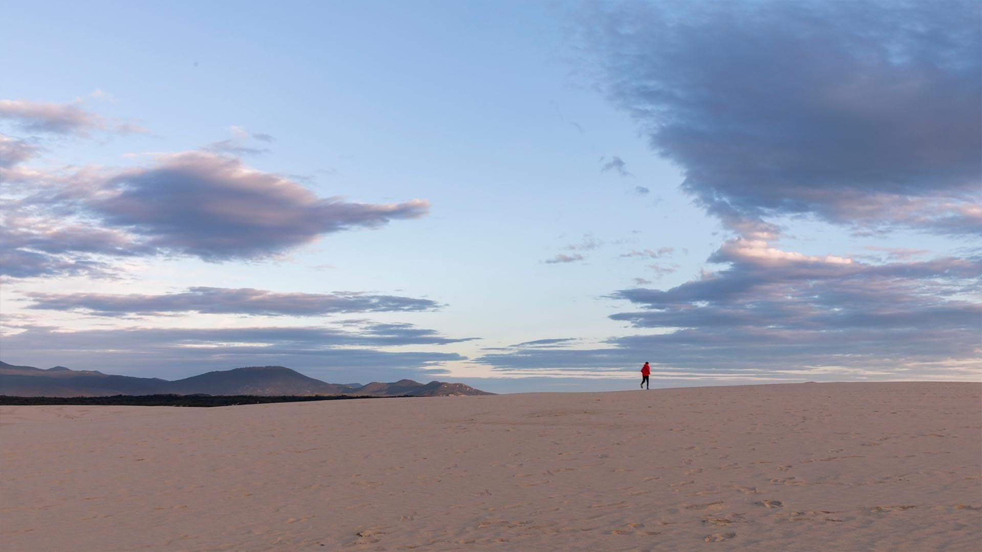 How to Spend 48 Hours in Wilsons Promontory
