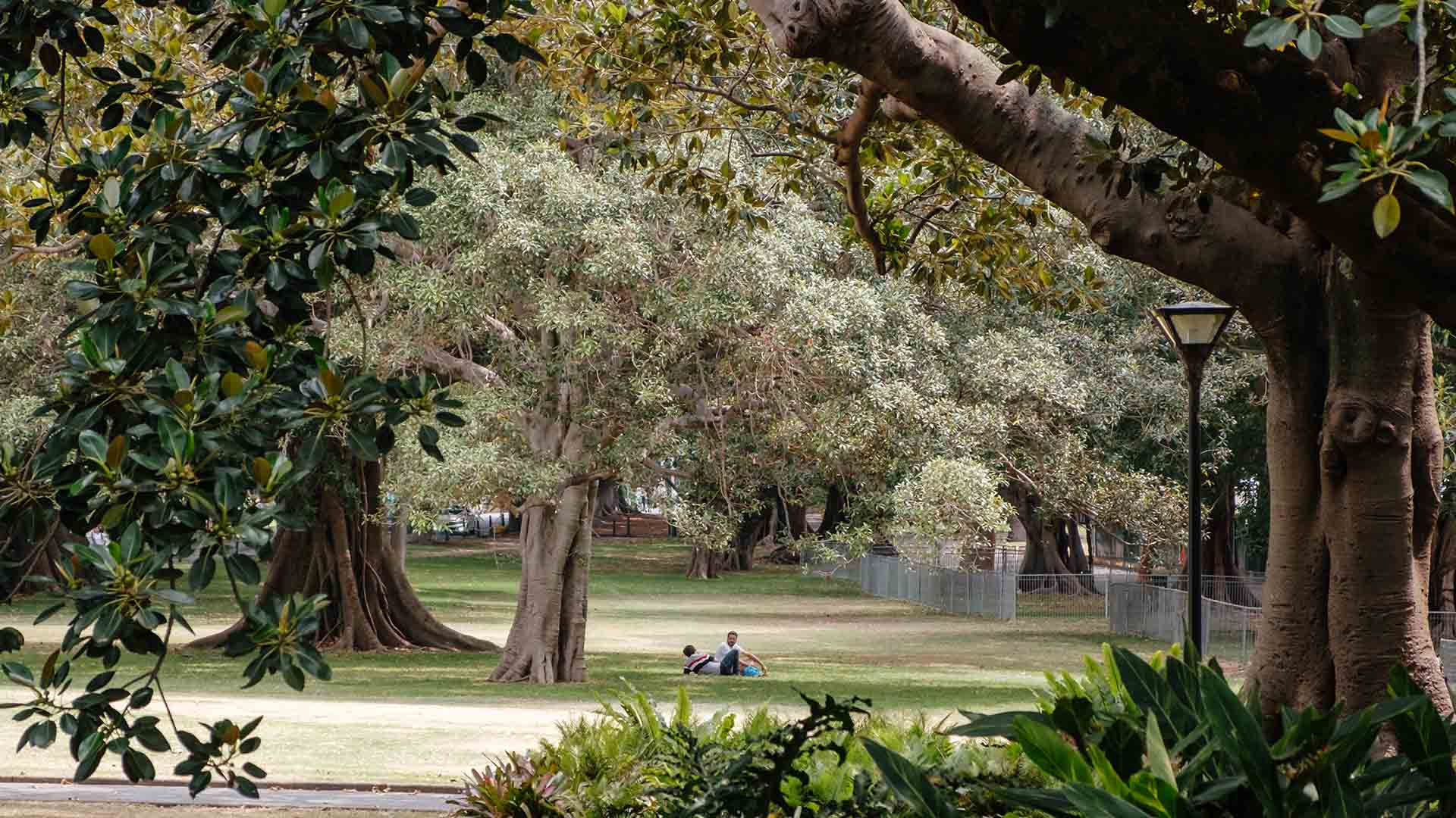 Here's What You Can and Can't Do Under Sydney's New Outdoor Recreation Rules